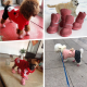 Pet cotton winter shoes